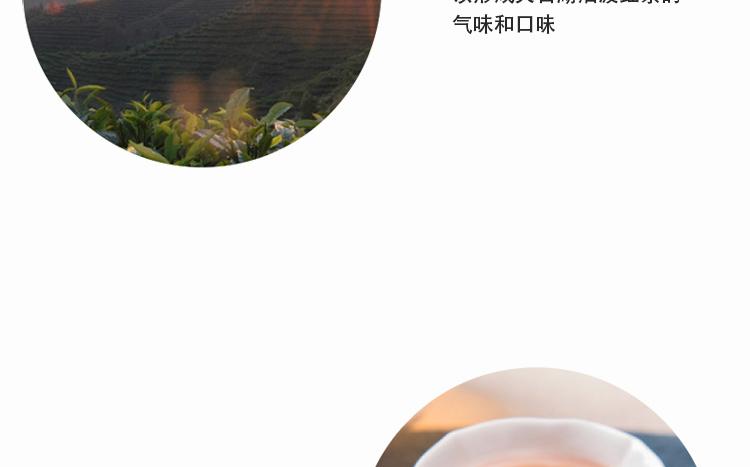 红茶_05.jpg